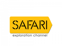 Safari TV | Live